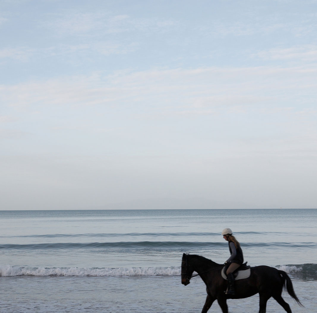 Pacific Light – Horse & Sea